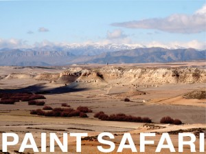 Paint-safari