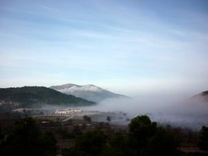 misty losgazquez